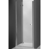 Душевая дверь 100х200cm Roltechnik TOWER LINE -700 TZNP1/1000 brillant
