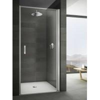 Душевая дверь в нишу 100 см Provex Look 0005 LN 05 GL